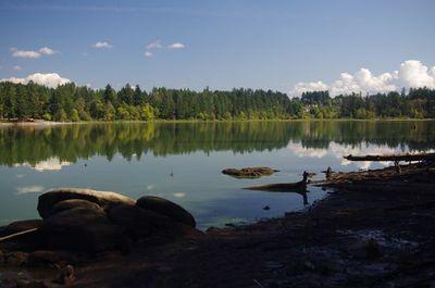 Lacamas Heritage Trail Hike - Hiking in Portland, Oregon and