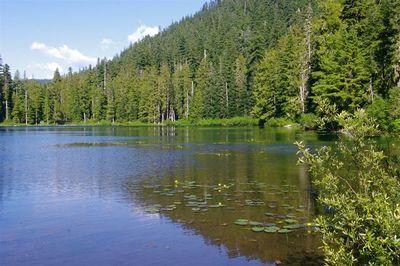 Opal Lake Hike Hiking In Portland Oregon And Washington