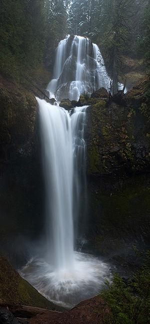 Falls Creek Falls Loop Hike Hiking In Portland Oregon