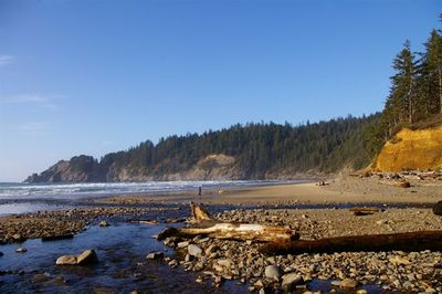 Short Sand Beach From Oregon Hikers Field Guide