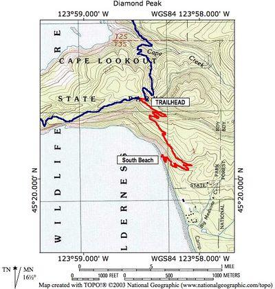 Cape Lookout South Hike Hiking In Portland Oregon And Washington