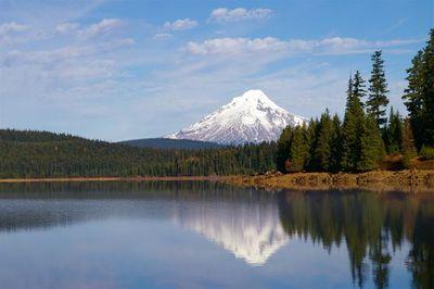 Timothy Lake Loop Hike Hiking In Portland Oregon And