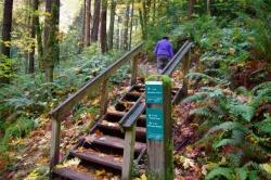 Marquam Nature Park History