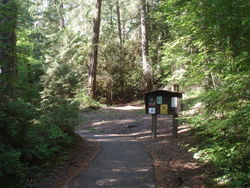 Bagby Hot Springs Trailhead - Hiking in Portland, Oregon and