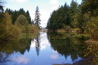 Lacamas Lake - Hiking in Portland, Oregon and Washington