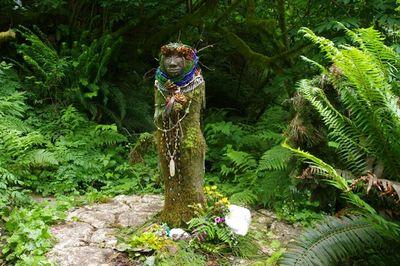 Amanda S Trail Hike Hiking In Portland Oregon And