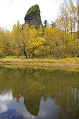 Rooster Rock Loop Hike Hiking In Portland Oregon And