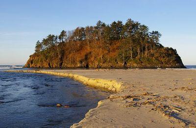Neskowin Beach To Porter Point Hike Hiking In Portland