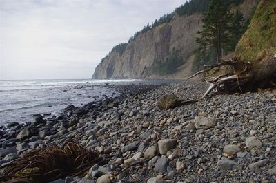 Cape Lookout South Hike Hiking In Portland Oregon And