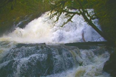 Alsea Oregon Map.Alsea And Green Peak Falls Hike Hiking In Portland Oregon And