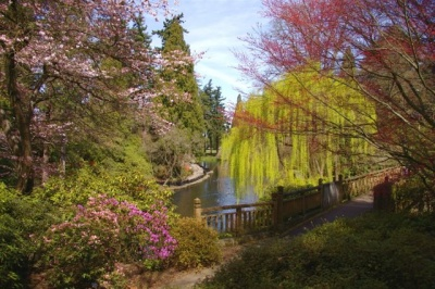 View To The Pond, Crystal Springs Rhododendron Garden (bobcat)
