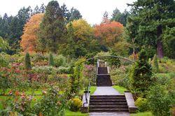 International Rose Test Garden Hiking In Portland Oregon And