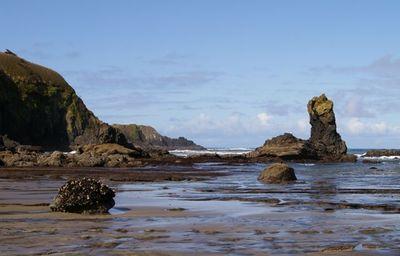 Starfish Cove Hiking In Portland Oregon And Washington