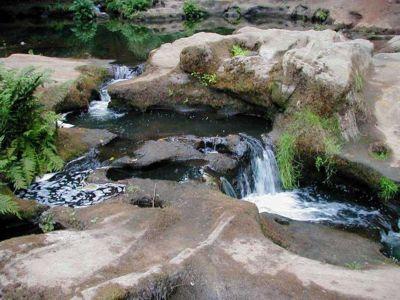 Lacamas Creek Hike Hiking In Portland Oregon And Washington