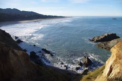 View To Bailey Beach From Otter Point Bobcat