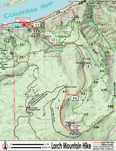 Larch Mountain Hike - Hiking in Portland, Oregon and Washington on