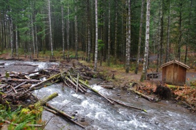 gales creek oregon map Gales Creek Hike Hiking In Portland Oregon And Washington gales creek oregon map