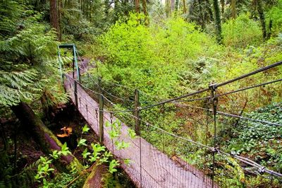 Image result for tryon creek
