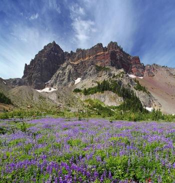 Canyon Creek Meadows Hike - Hiking in Portland, Oregon and Washington