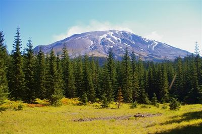 Blue Horse Loop Hike - Hiking in Portland, Oregon and Washington