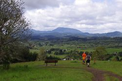 Joggers and Marys Peak, Bald Hill Natural Area.jpg