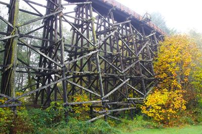 Banks Vernonia Traverse Hike Hiking In Portland Oregon And
